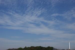 巻積雲(2008/10/29)